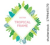 tropical bushes  plants and... | Shutterstock .eps vector #1799645170