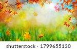 orange fall  leaves  autumn...   Shutterstock . vector #1799655130