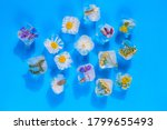 Ice Cubes With Flowers On A...