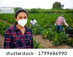 Small photo of Portrait of confident latin american female farmer wearing protective face mask during harvest on courgettes field. Forced precautions during coronavirus pandemic