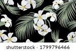Floral Seamless Pattern  White...