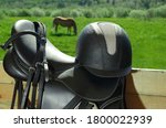 The Bridle  The Horse Saddle...