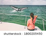 Whale Watching Boat Tour...