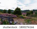 A Panorama Of The L Neburg Heath