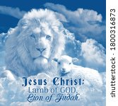 Jesus Christ Lamb And Lion