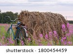 Bicycle Stands In A Field At...