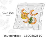 vector hand drawn sketch... | Shutterstock .eps vector #1800562510