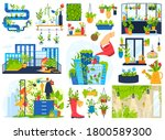 flowers plants grow in house... | Shutterstock .eps vector #1800589300