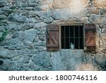 Rock wall with a wooden window with a plant - stock photo