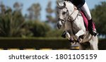Sport Horse Jumping Over A...