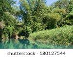 Wilderness along the Martha Brae River, Falmouth, Jamaica - stock photo