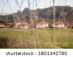 Backgroound Houses In The Nature
