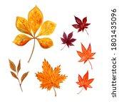 Autumn Leaf Watercolor...