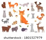 cute wild animals. vector... | Shutterstock .eps vector #1801527979
