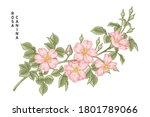 sketch floral decorative set.... | Shutterstock .eps vector #1801789066