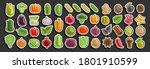 vector set of vegetables  group ... | Shutterstock .eps vector #1801910599