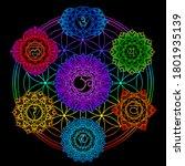 set of seven chakras  flower of ...   Shutterstock .eps vector #1801935139