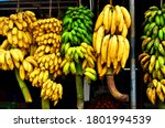 Varieties Of Bananas Hanging On ...