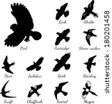 Set Of Black Isolated Vector...