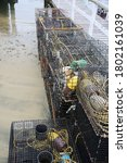 Crab Traps. Fishing Crab Traps...
