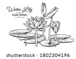 sketch floral decorative set.... | Shutterstock .eps vector #1802304196