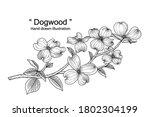 sketch floral decorative set.... | Shutterstock .eps vector #1802304199