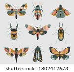 vector set of colorful insects... | Shutterstock .eps vector #1802412673