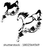 Beautiful Wild Horse Jumping...