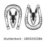 portrait of a donkey in a...   Shutterstock .eps vector #1803242386