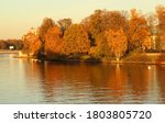 Beautiful Autumn Park  Trees...