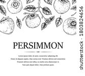 Hand Drawn Vintage Persimmon...