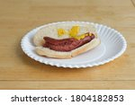 Nasty Looking Hotdog On A Paper ...