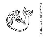 Koi Jinli Or Nishikigoi Fish...