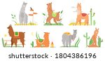 cartoon lama flat illustrations.... | Shutterstock . vector #1804386196