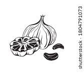 illustration of black fermented ...   Shutterstock .eps vector #1804791073