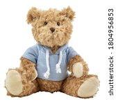 Baby Bear Plush Toy Isolated O...