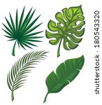 set of tropical leaves | Shutterstock .eps vector #180543320