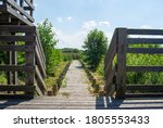 Wooden Platform And Boardwalk...