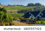 A vineyard and winery in the rolling hills near Salem Oregon