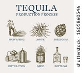 Tequila Production Process....