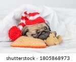 Cute Pug Puppy Sleeps On Pillo...