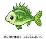 Cute Ruff Fish On A White...