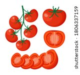 collection of fresh red tomato... | Shutterstock .eps vector #1806337159
