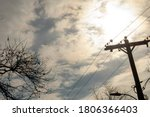Silhouette Telephone Wires And...