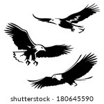 bald eagle | Shutterstock .eps vector #180645590