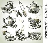 Hand Drawn Sketch Vector Tea...