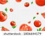 vector red ripe tomato whole...   Shutterstock .eps vector #1806644179