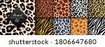 trendy wild animal seamless...   Shutterstock .eps vector #1806647680