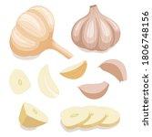 bulb of garlic. vector...   Shutterstock .eps vector #1806748156