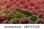 bacteria  3d rendered coli... | Shutterstock . vector #180727220